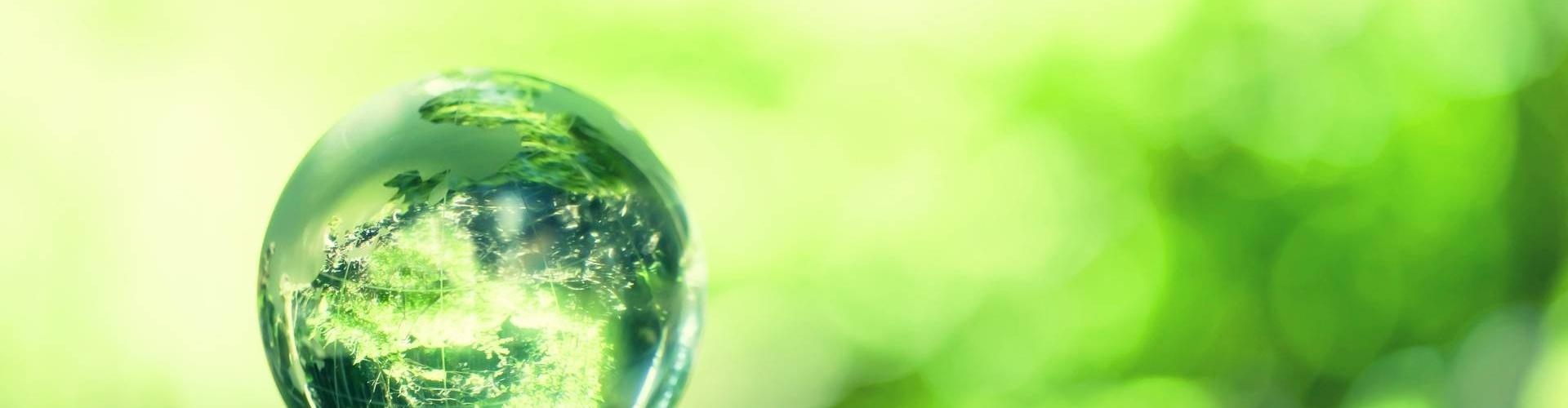 La Casalinda | Green Economy